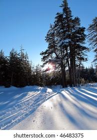 Sunrise, sunshine, snow, near Truckee, California