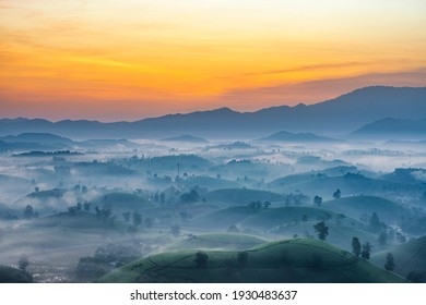 Sunrise in Tea hills in Long Coc highland, Phu Tho province in Vietnam