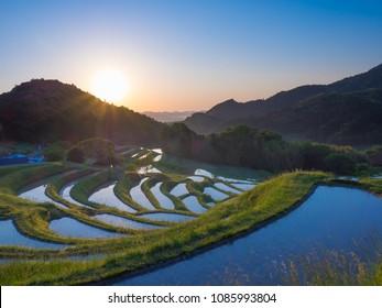 sunrise of terraced rice-fields at Oyama Senmaida Chiba Japan