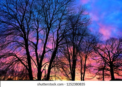 Sunrise and tree silhouettes, February in the Appalachian Mountains