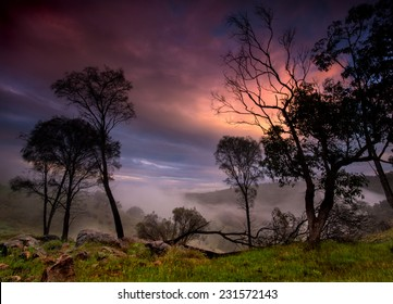 Sunrise with tree silhouettes and mist in the hills overlooking valley in Australia