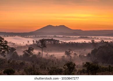 Sunrise at Tung Salang Luang National Park, Thailand