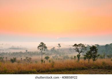 Sunrise at Tung Salang Luang National Park in Phetchabun, ThailandTung slang luang is Grassland savannah in Thailand.Beautiful fresh viewpoint Tung Salang Luang, Thailand.