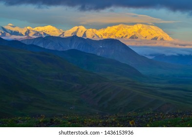 Sunrise view of Mount Denali (mt Mckinley) peak with alpenglow during golden hour from Stony Dome overlook. Denali National Park and Preserve, Alaska, United States