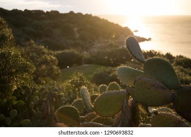 Sunrise in Villasimius, Sardinia, Italy