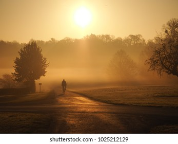 Sunrise in Windsor Great Park
