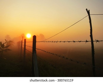 Sunrise in the winter morning/In Thailand , Asia