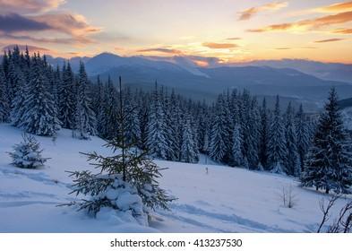 Sunrise in winter mountains . Sunrise in Carpathian Mountains, Ukraine