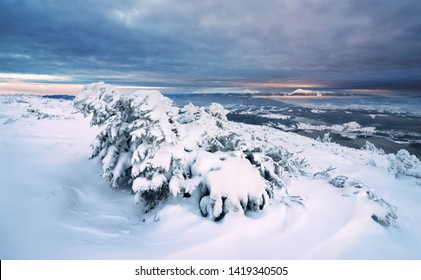 Sunrise in winter mountains. |On Syniak Mountain, Carpathians