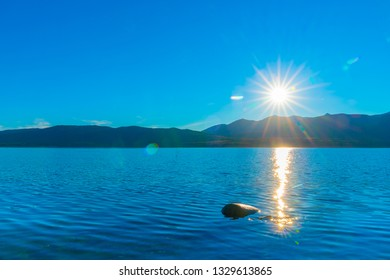 Sunrises over distant Murchisan Mountains across Lake Te Anau sending a sparkling light trail across water to lone rock  South Island New Zealand