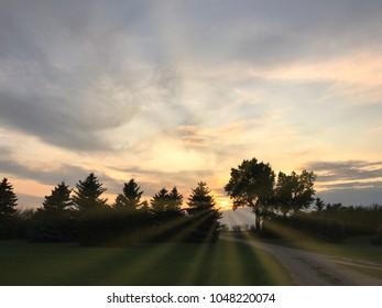 Suns rays breaking through trees during a Saskatchewan Sunset
