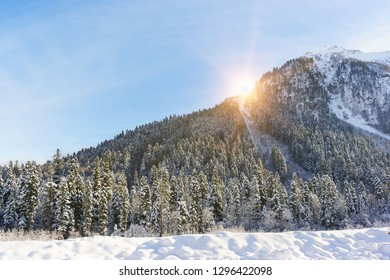 The suns rays make their way through the mountain, overgrown with fir forest. Winter dawn in the ski resort Dombay