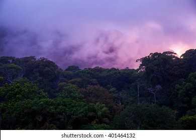 Sunset above jungle. Sinharaja rainforest, Sri Lanka