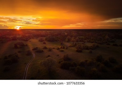 Sunset, aerial, atmospheric view on curving sandy path, Moremi forest, Botswana. Typical ecosystem, part of Okavango delta, aerial photography. Vast wilderness without people, animal paradise.Africa.