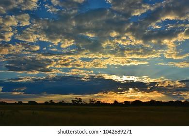 Sunset in african savanna