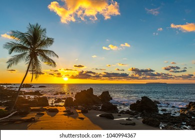 Sunset along the Pacific Ocean coast of Costa Rica with the silhouette of a palm tree inside Corcovado National park, Osa Peninsula, Central America.