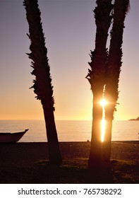 sunset among palm trees in the mediterranean,peace, calm, serenity, harmony, fullness, well-being, nature, natural, contemplate, meditate, breathe, grow, happiness, tranquility, fullness, integration,