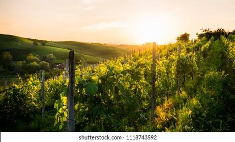 Sunset in Asti