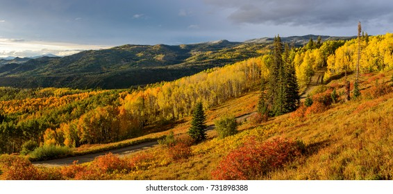 Sunset Autumn Mountain Valley - A panoramic autumn sunset view of golden aspen grove in a mountain valley, Routt National Forest, Steamboat Springs, Colorado, USA.