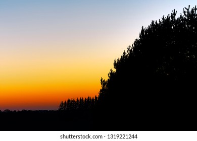 Sunset in autumn with silhouetted trees.