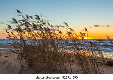 Sunset in the bay. Seascape. Jurmala, Latvia.