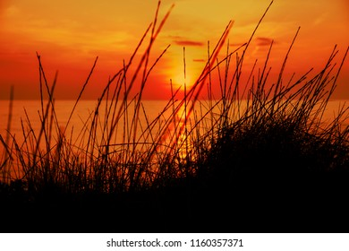Sunset at the beach with a red sky and grass in the foreground