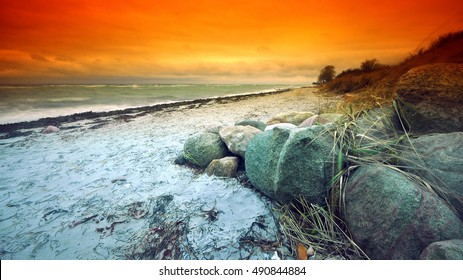sunset beach with waves and stones,shells,seaweed and orange background