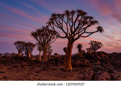 Sunset with beatiful clouds at Quiver tree Forest, at Keetmanshoop, Namibia.