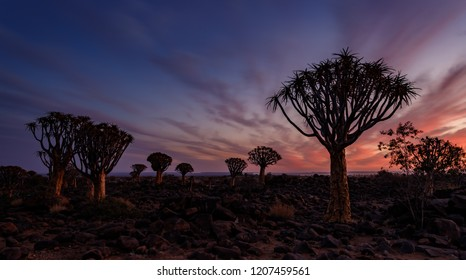 Sunset with beautiful clouds at Quiver tree Forest, Keetmanshoop, Namibia.