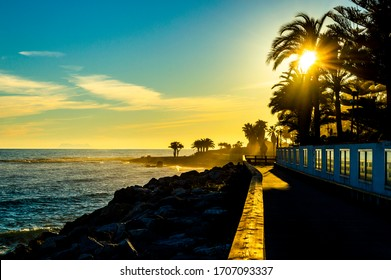 sunset between palm trees and the sea in Puerto Banus in Andalucia, Spain with the sea and the beach