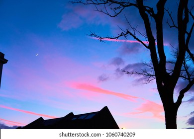 Sunset in blue and pink, with the silhouette of a house and a tree, con trails glow a hot pink in a powder blue sky with room for your text and the crescent moon glows