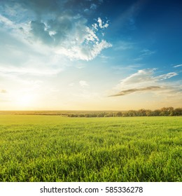 sunset in blue sky over green agricultural field