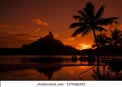 Sunset in Bora BOra with palm trees