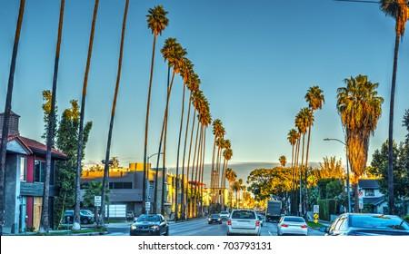 Sunset boulveard in the evening. California, USA