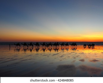 Sunset in Broome, Western Australia with Camel.
