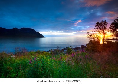 Sunset by the coast of Senja, Norway
