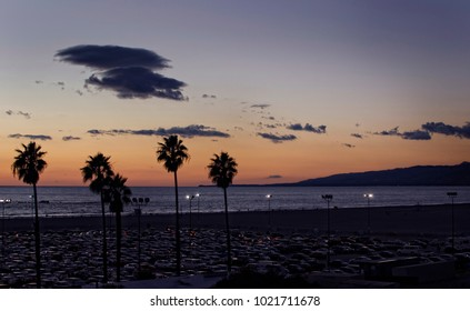 Sunset in california beach with palm trees in backlight