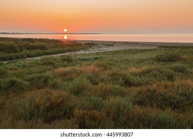 Sunset in the Camargue national park. Rhone Delta, Provence, France