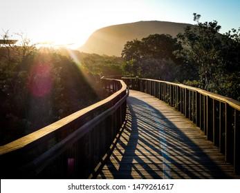 Sunset casts brilliant light rays and long shadows on the Coolum boardwalk on the Sunshine Coast, Queensland, Australia