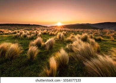Sunset at Christchurch, NZ.