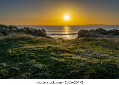 Sunset with clear sky on top of the cliffs at Hengistbury Head  the low sun lighting up the heather and coastal grasses.