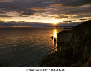 Sunset from the cliff Dunedin, South Island, New Zealand.