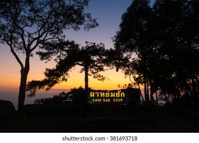 Sunset at cliff, with silhouettes of tree at (Lomsak Cliff ) Phukradung National Park, Thailand (long exposure)