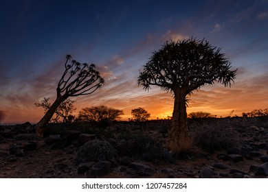 Sunset at with clouds at Quiver tree Forest, Keetmanshoop, Namibia.