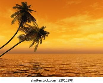 Sunset coconut palms tree on ocean coast
