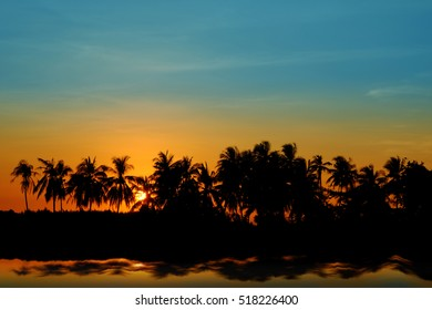 Sunset Coconut Tree Silhouettes, Tropical Sunset.