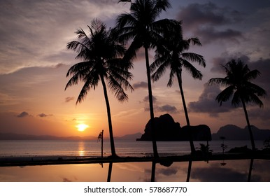 Sunset with coconut trees and sea view
