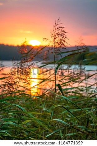 Sunset Coloring Sky Over Lake Sandefjord Stock Photo (Edit Now ...