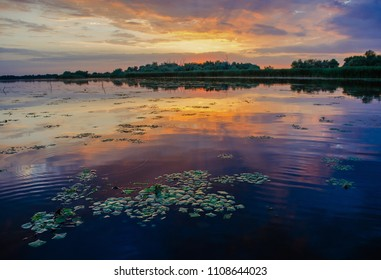 sunset in the Danube delta Romania.Beautiful yellow lights in water.Beautiful sunset landscape from the Danube Delta Biosphere Reserve in Romania