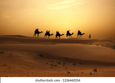 Sunset in desert with camel caravan silhouette on sand dunes